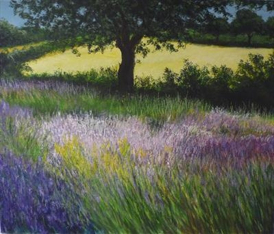 Breeze through Fields of Lavendar
