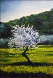 Almond Tree in Blossom by Deborah Elizabeth McNeill, Painting, Oil on canvas