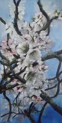 Almond Blossom #3 by LIZZY FORRESTER, Painting, Oil on canvas