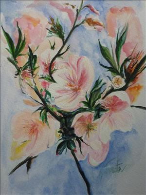 Almond blossom, flowers by Deborah Elizabeth McNeill, Painting, Acrylic on paper